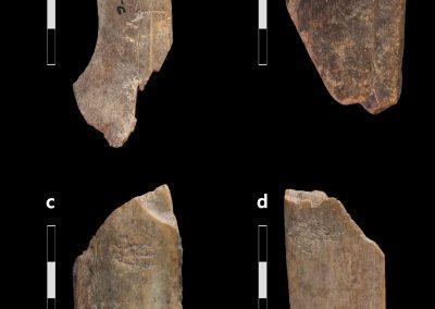 Banda et al. 2020. Figure 5